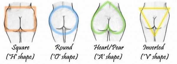 Butt Shape 図.jpg