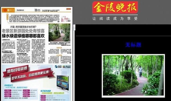 南京の新聞.jpg