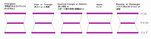 各体型図.jpg